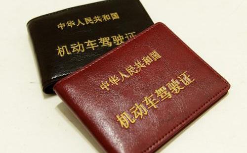 怎样选择专业的驾照翻译公司?