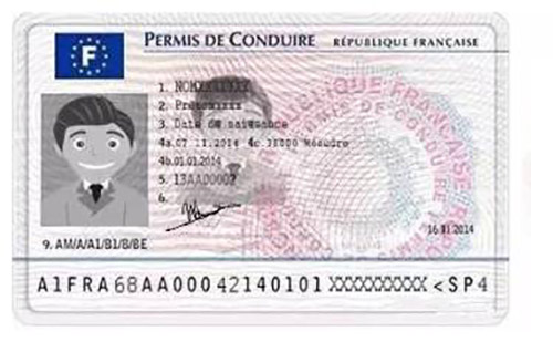 翻译一本法语驾照多少钱?