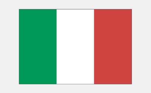 意大利语翻译